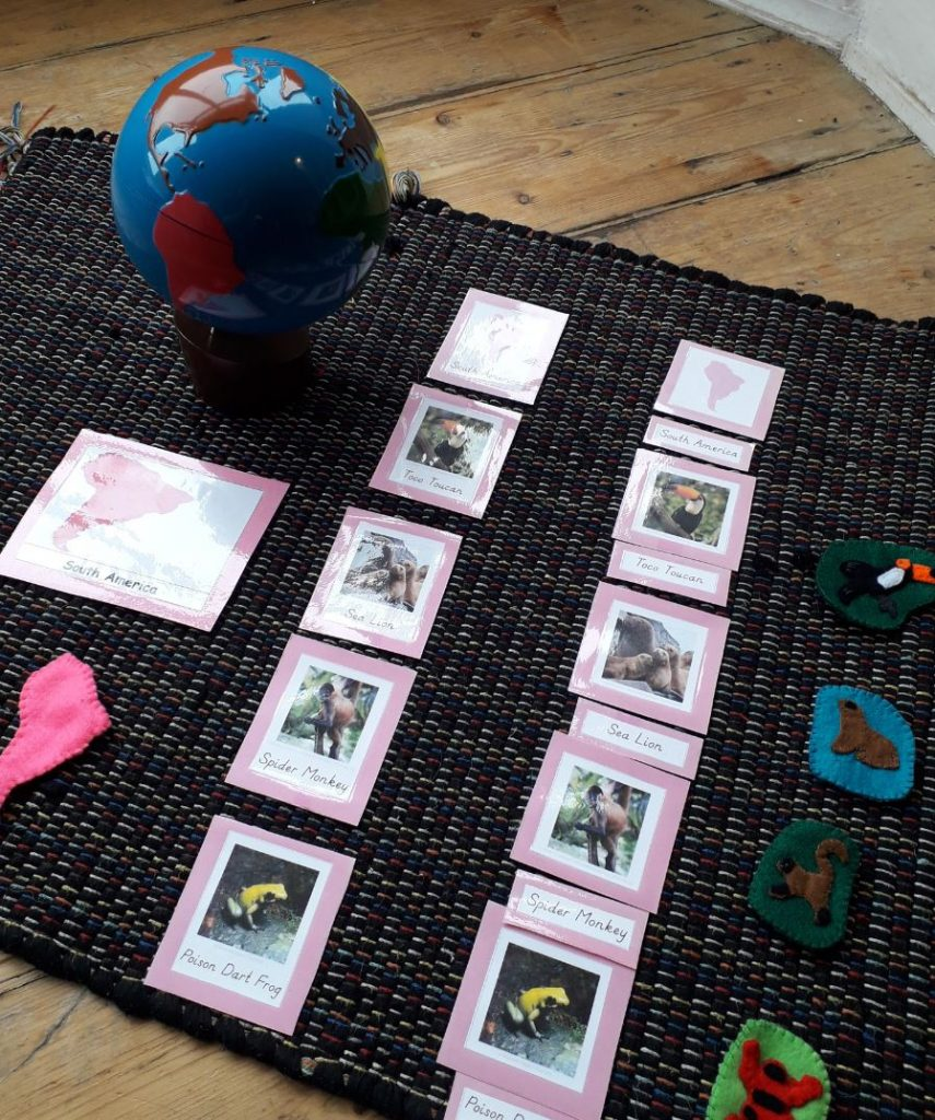 Animal and continents matching activity